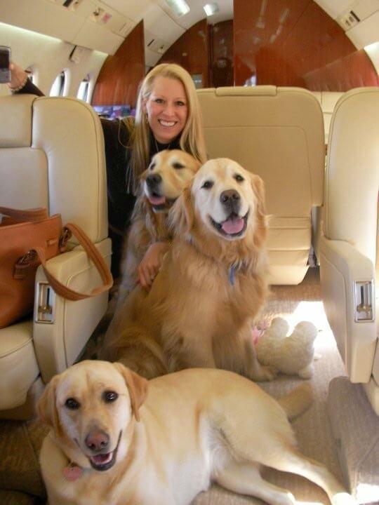 Spoilt dogs
